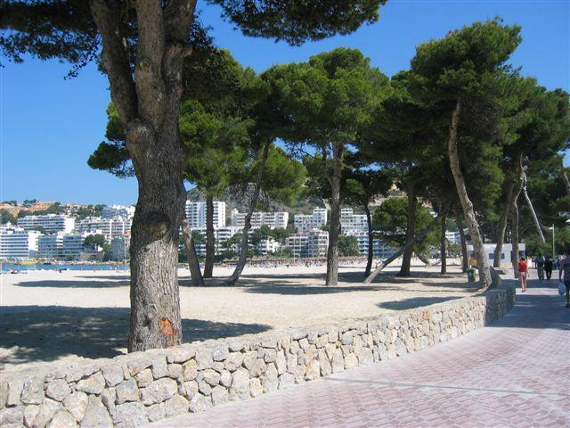 Historia del ajedrez associaci d 39 escaquistes de balears for Aparthotel d or jardin de playa santa ponsa